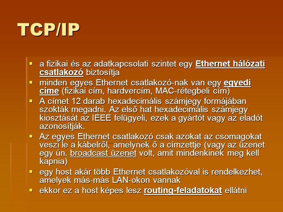 TCP/IP a fizikai és az adatkapcsolati szintet egy Ethernet hálózati csatlakozó biztosítja.