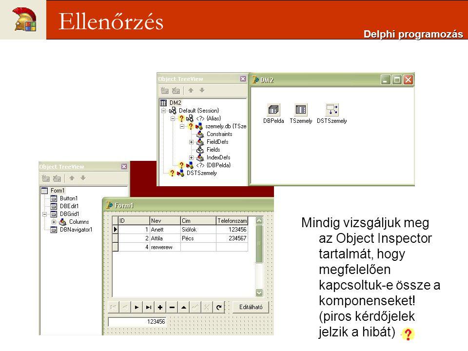 Delphi programozás Ellenőrzés.