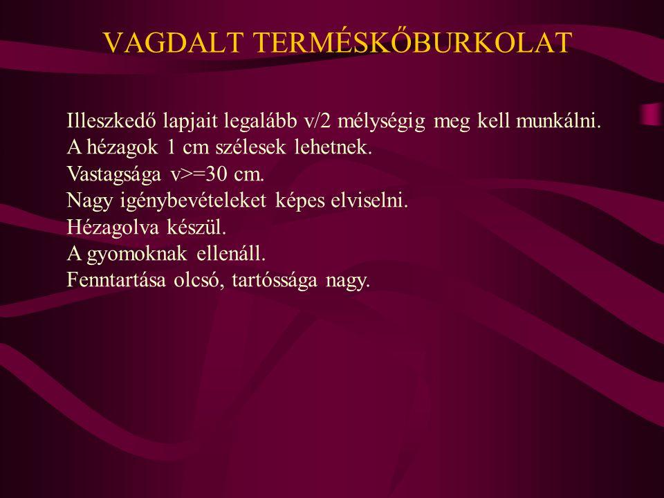 VAGDALT TERMÉSKŐBURKOLAT