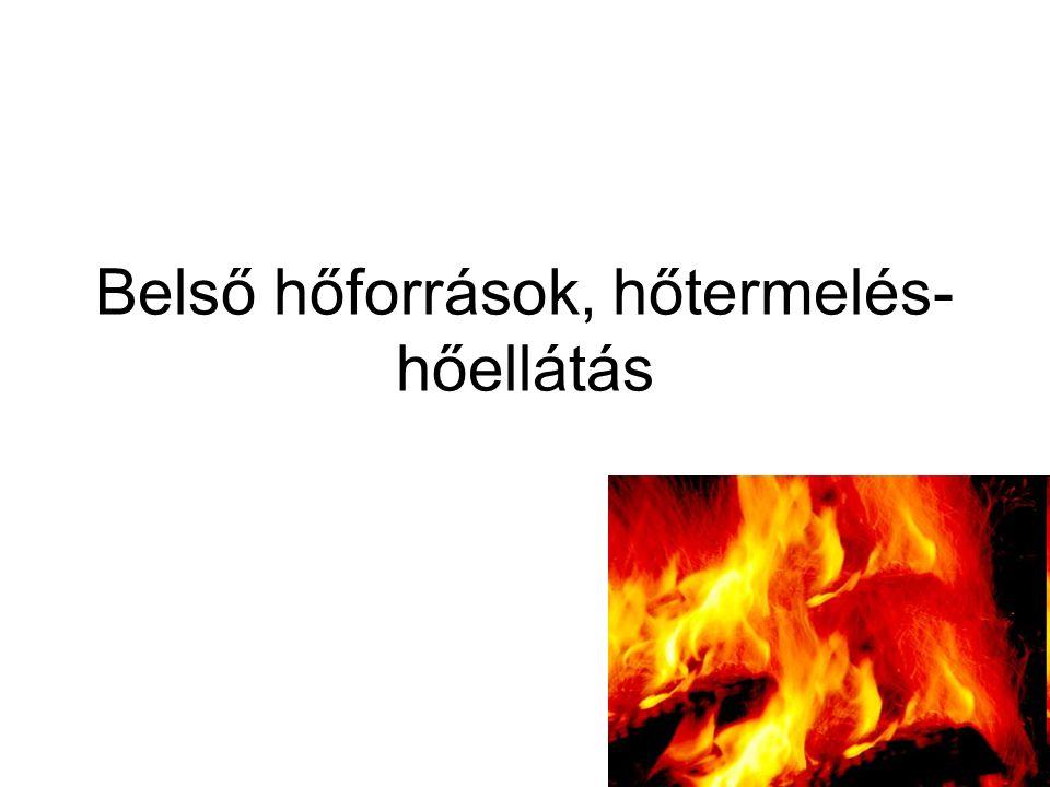 Belső hőforrások, hőtermelés-hőellátás