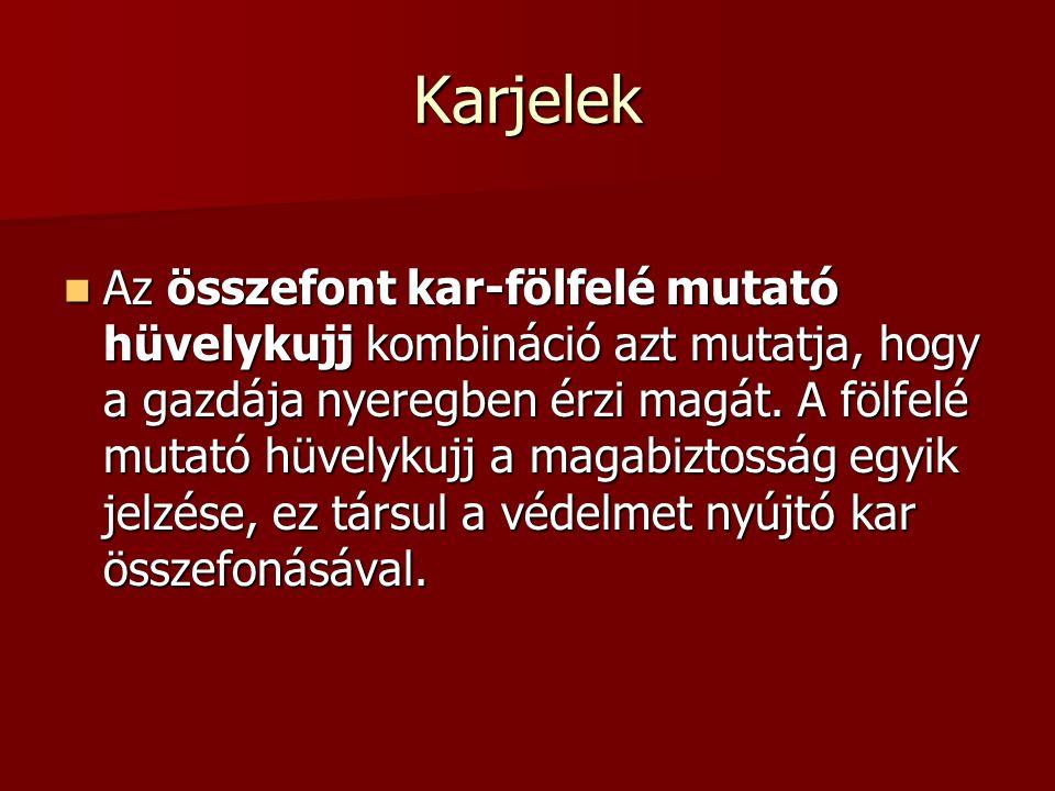 Karjelek