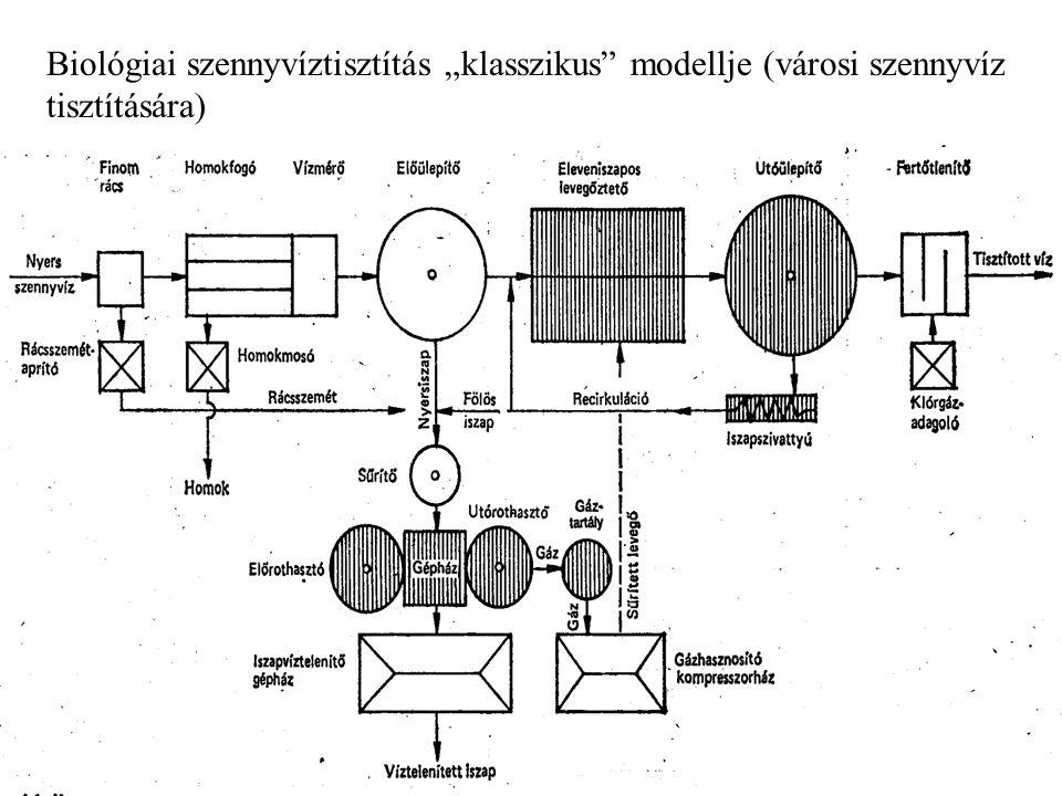 """Biológiai szennyvíztisztítás """"klasszikus modellje (városi szennyvíz tisztítására)"""