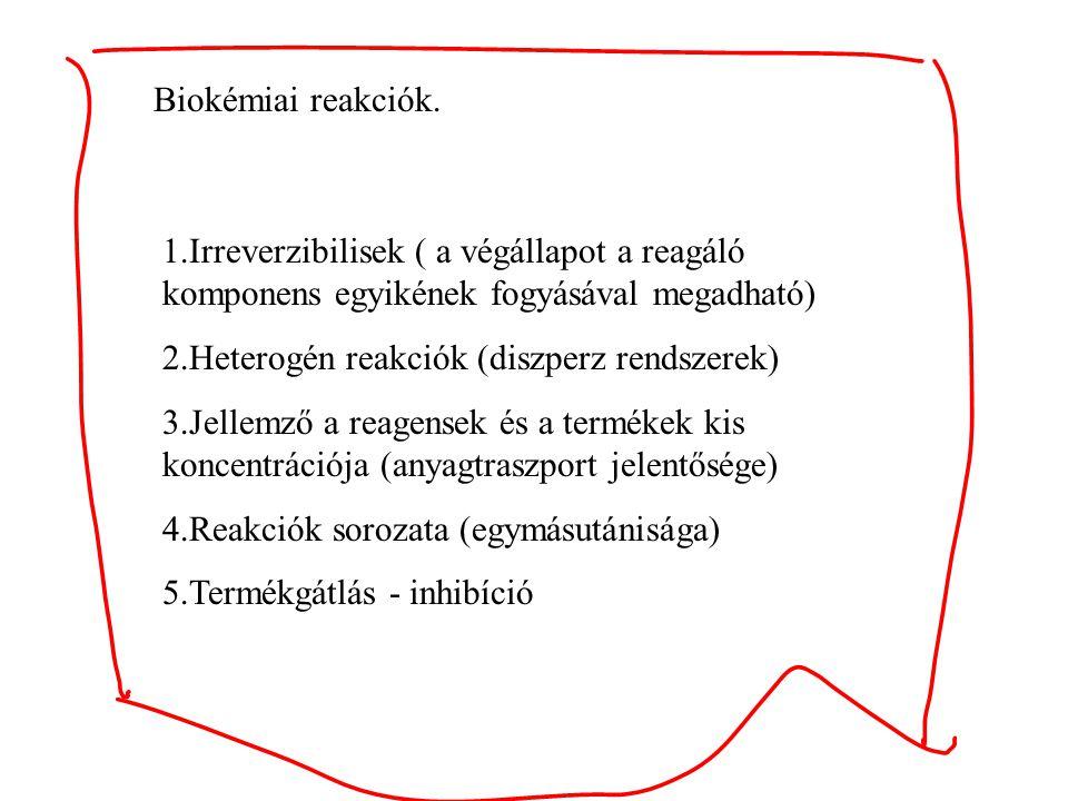 Biokémiai reakciók. 1.Irreverzibilisek ( a végállapot a reagáló komponens egyikének fogyásával megadható)