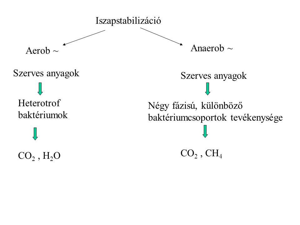 Iszapstabilizáció Anaerob ~ Aerob ~ Szerves anyagok. Szerves anyagok. Heterotrof baktériumok.