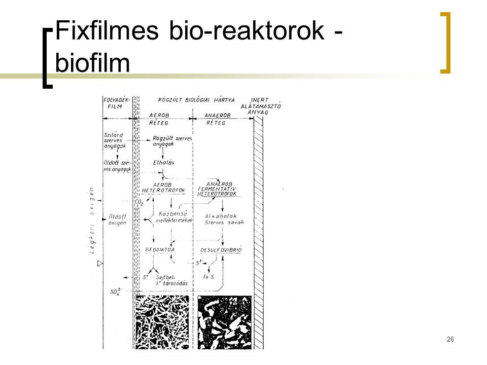 Fixfilmes bio-reaktorok - biofilm