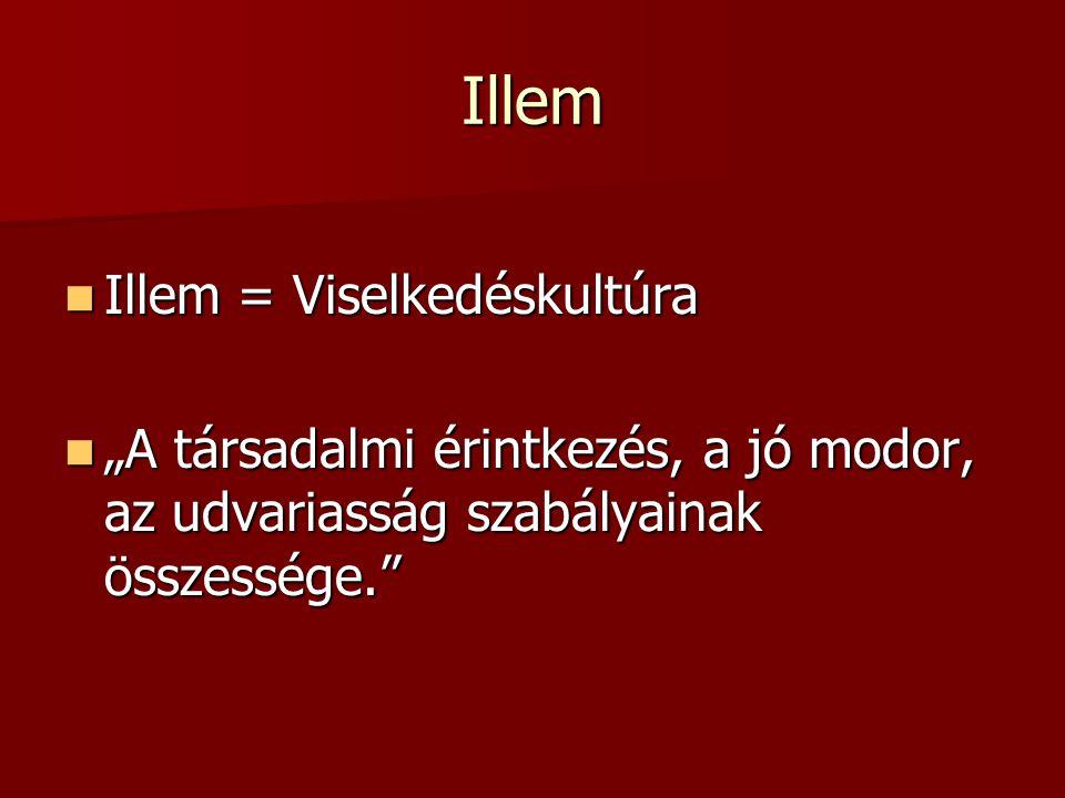 Illem Illem = Viselkedéskultúra