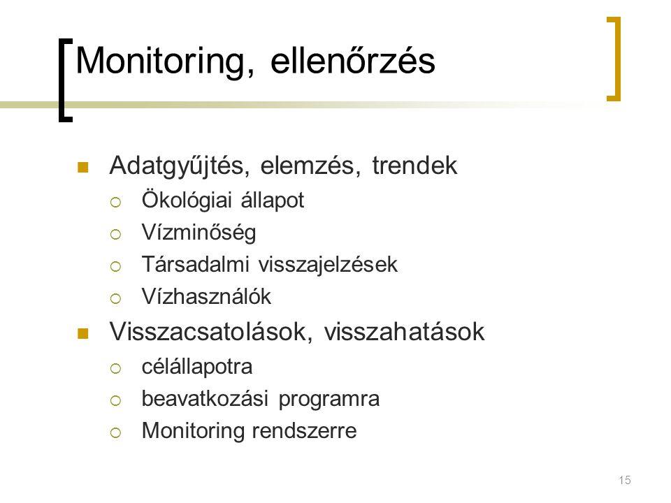 Monitoring, ellenőrzés