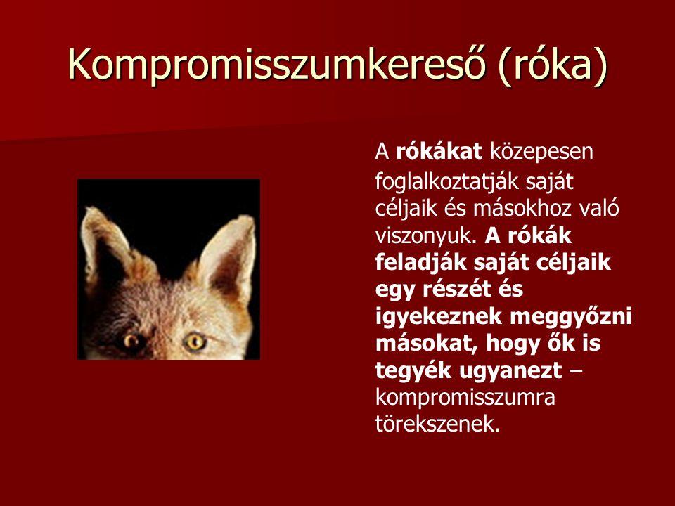 Kompromisszumkereső (róka)