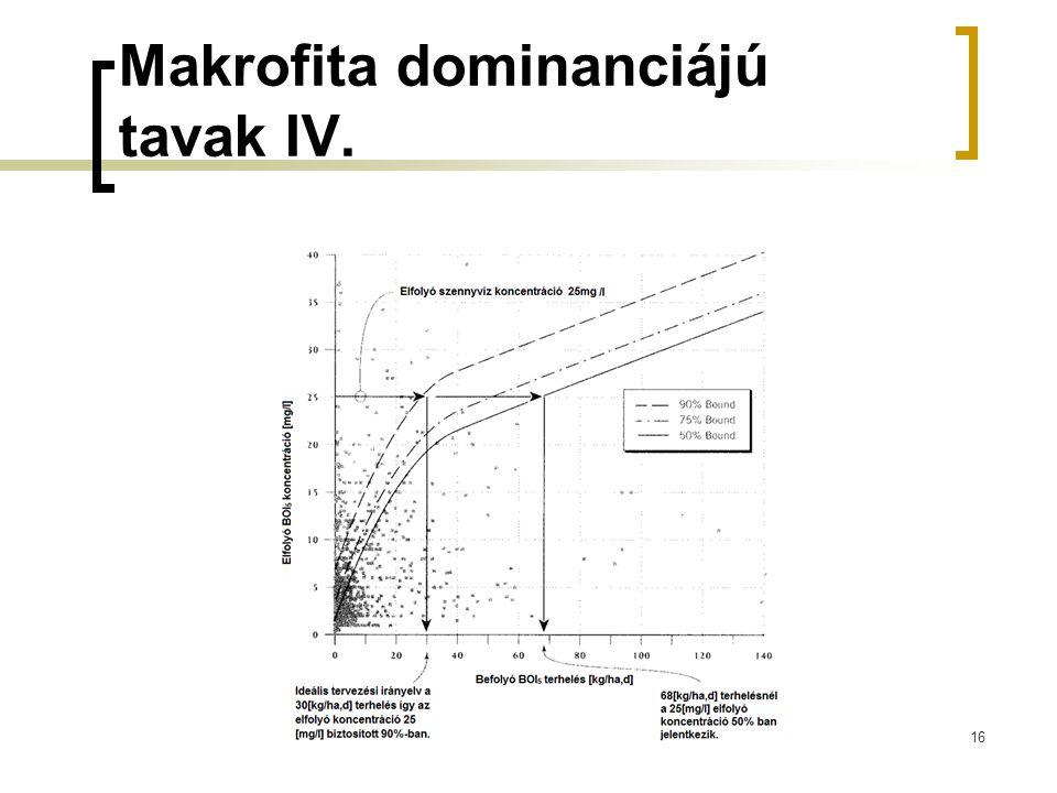 Makrofita dominanciájú tavak IV.