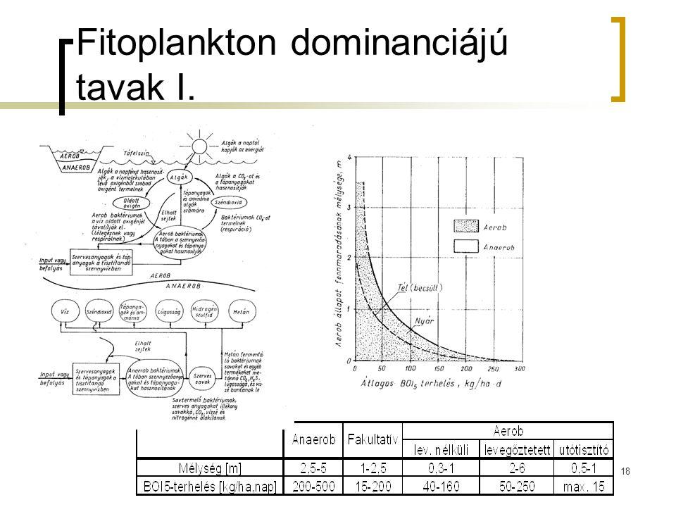 Fitoplankton dominanciájú tavak I.
