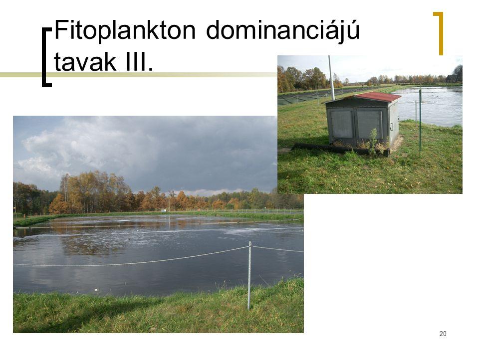 Fitoplankton dominanciájú tavak III.