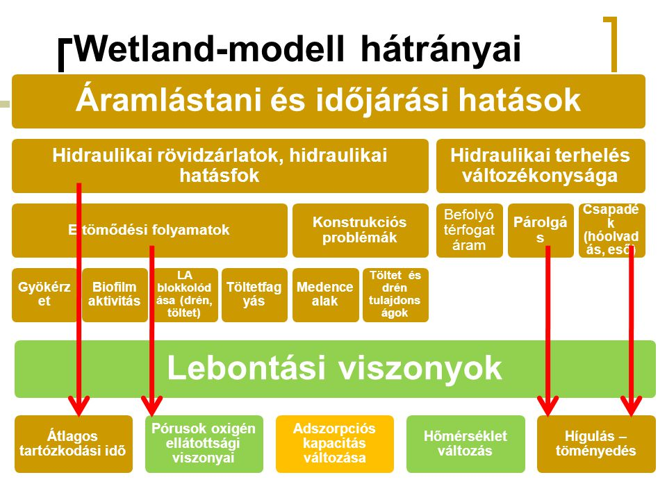 Wetland-modell hátrányai