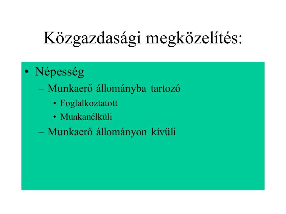Közgazdasági megközelítés: