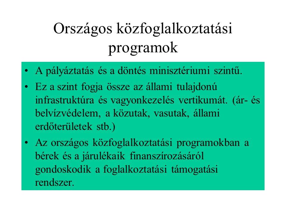 Országos közfoglalkoztatási programok