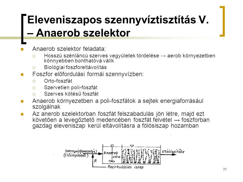 Eleveniszapos szennyvíztisztítás V. – Anaerob szelektor