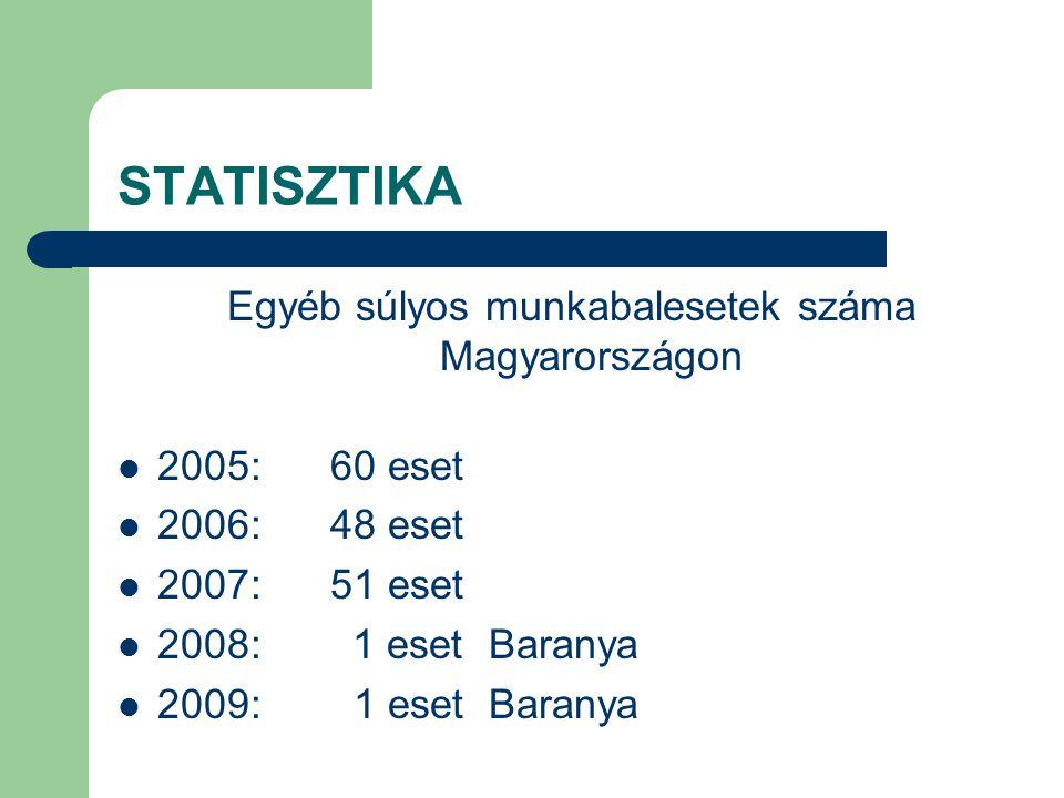 Egyéb súlyos munkabalesetek száma Magyarországon