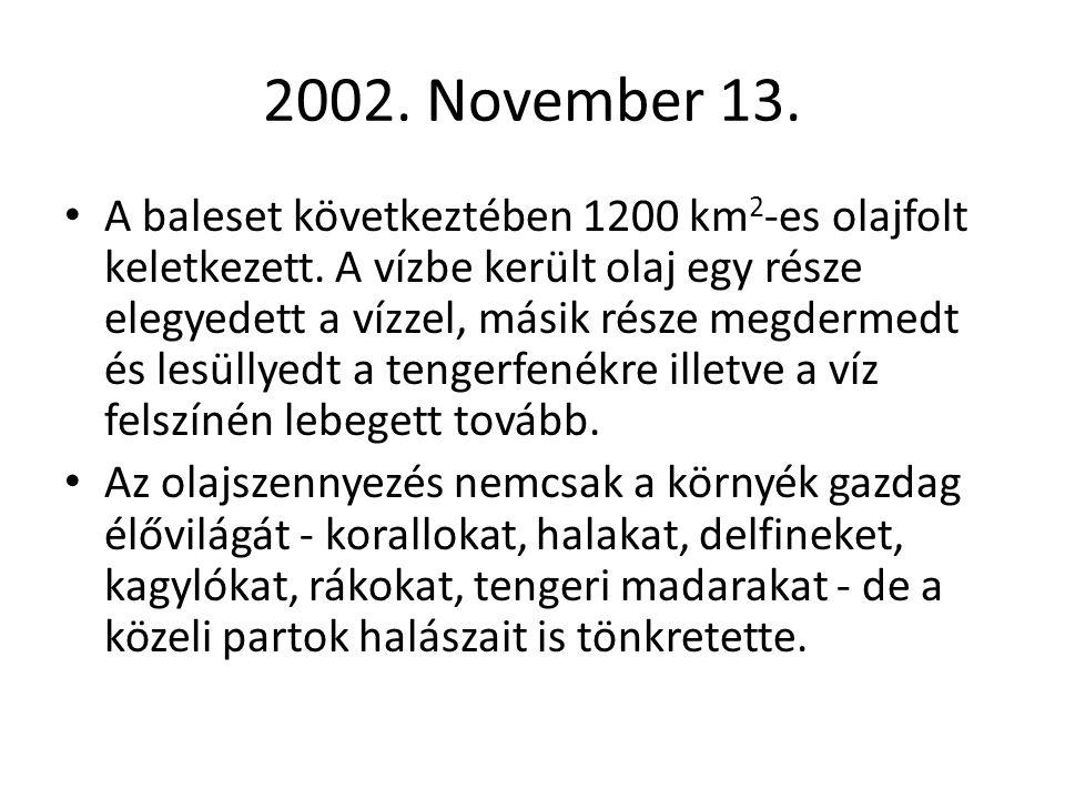 2002. November 13.