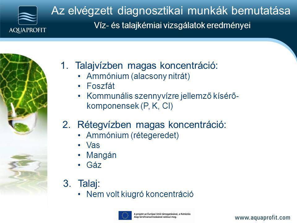 Az elvégzett diagnosztikai munkák bemutatása Víz- és talajkémiai vizsgálatok eredményei