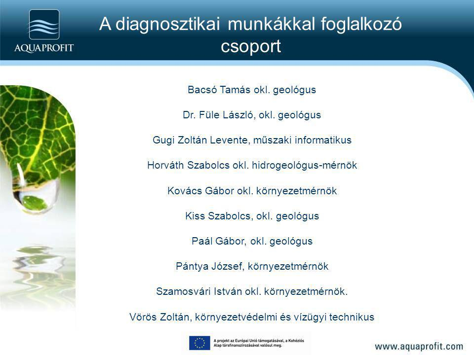 A diagnosztikai munkákkal foglalkozó csoport