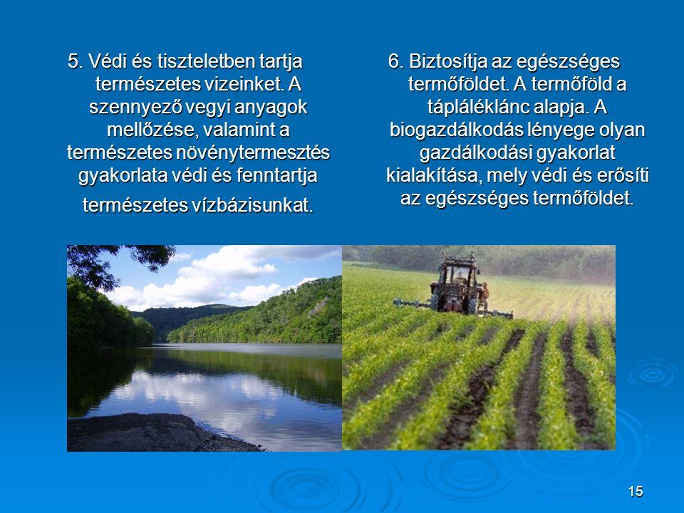 5. Védi és tiszteletben tartja természetes vizeinket