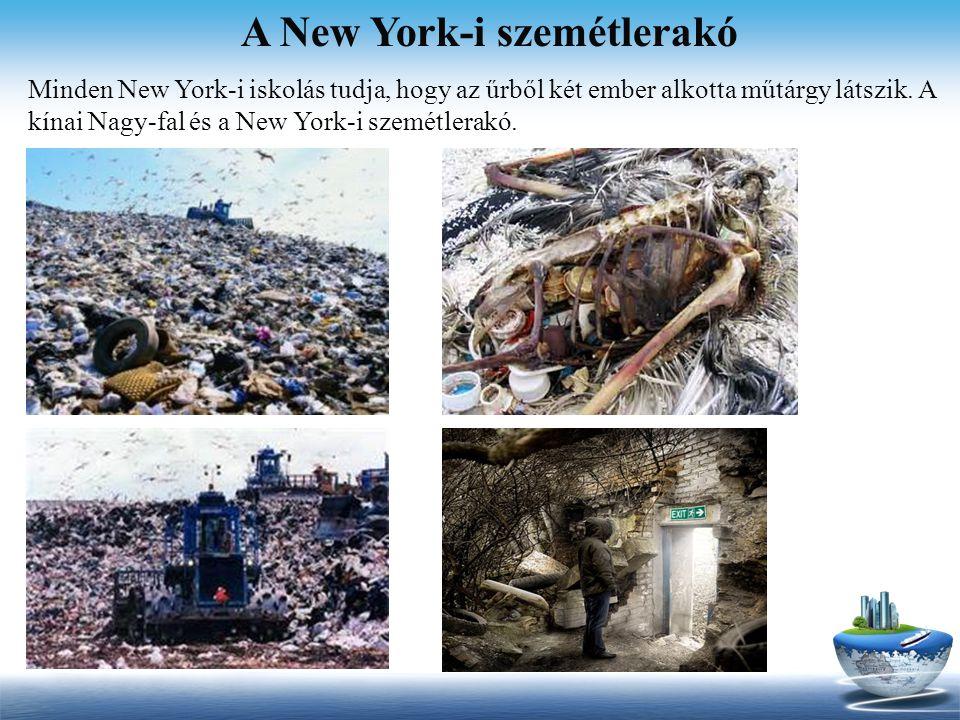 A New York-i szemétlerakó