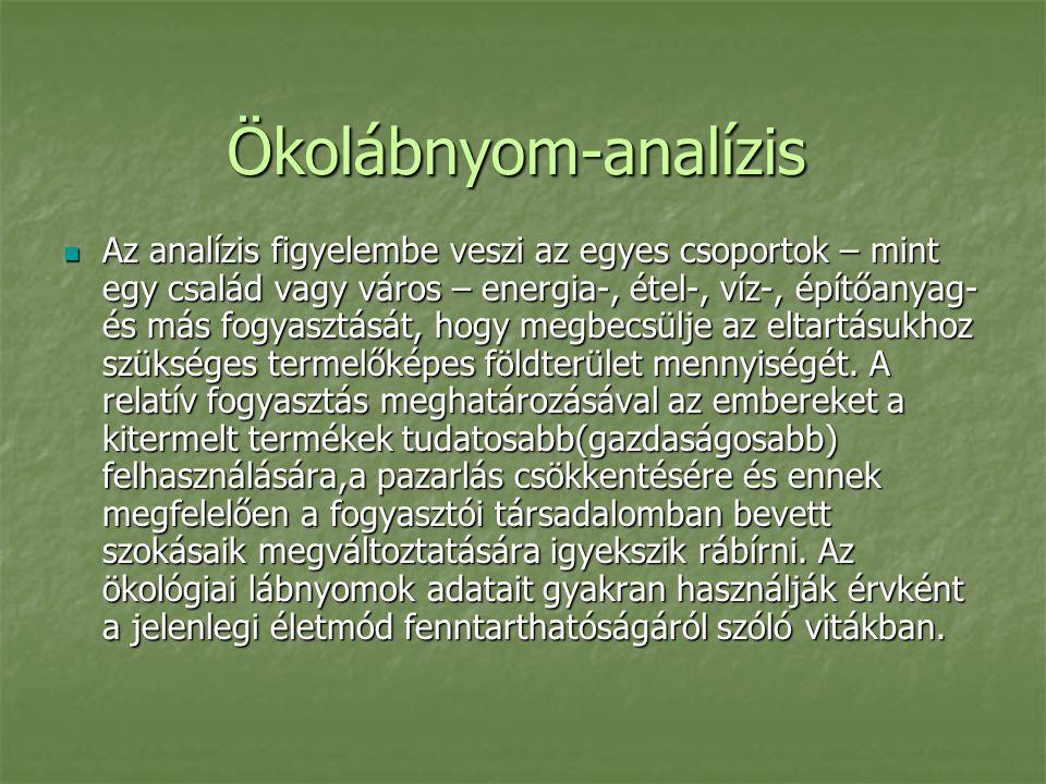 Ökolábnyom-analízis