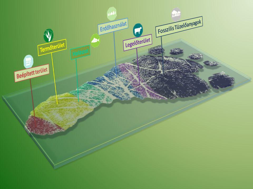 Erdőhasználat Fosszilis Tüzelőanyagok Legelőterület Termőterület Halászat Beépített terület