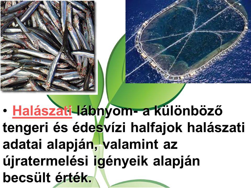 Halászati lábnyom- a különböző tengeri és édesvízi halfajok halászati adatai alapján, valamint az újratermelési igényeik alapján becsült érték.