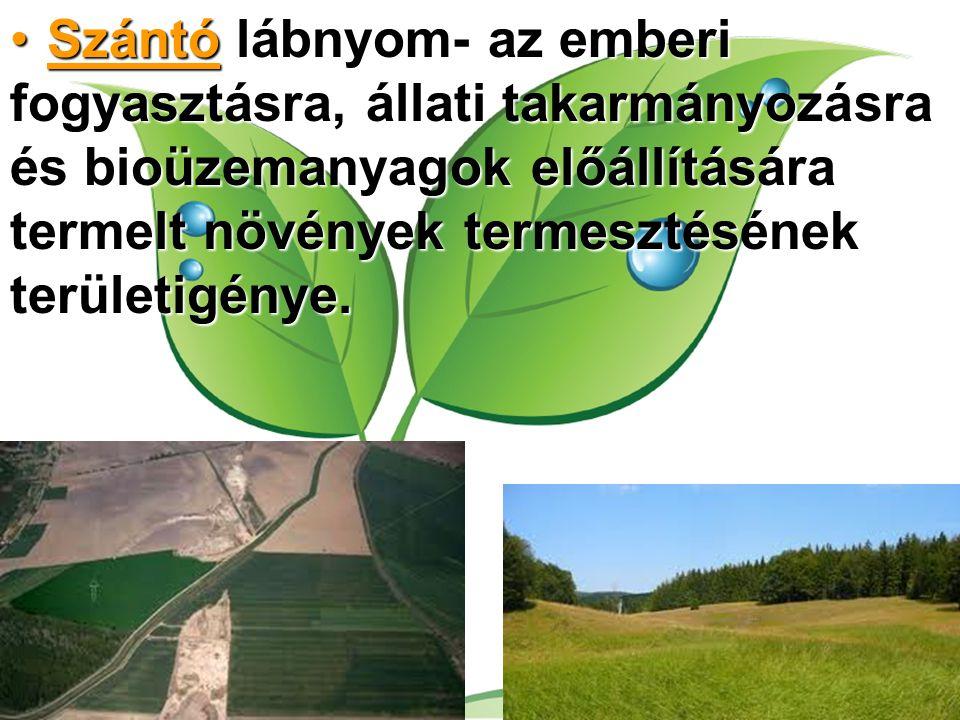 Szántó lábnyom- az emberi fogyasztásra, állati takarmányozásra és bioüzemanyagok előállítására termelt növények termesztésének területigénye.