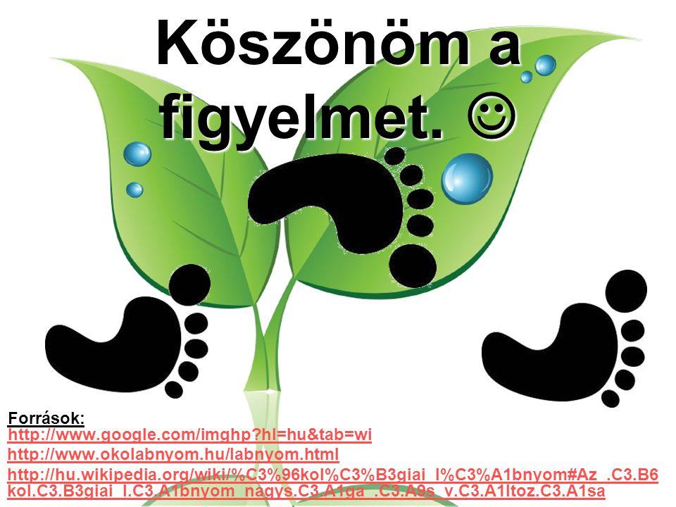 Köszönöm a figyelmet.  Források: http://www.google.com/imghp hl=hu&tab=wi. http://www.okolabnyom.hu/labnyom.html.