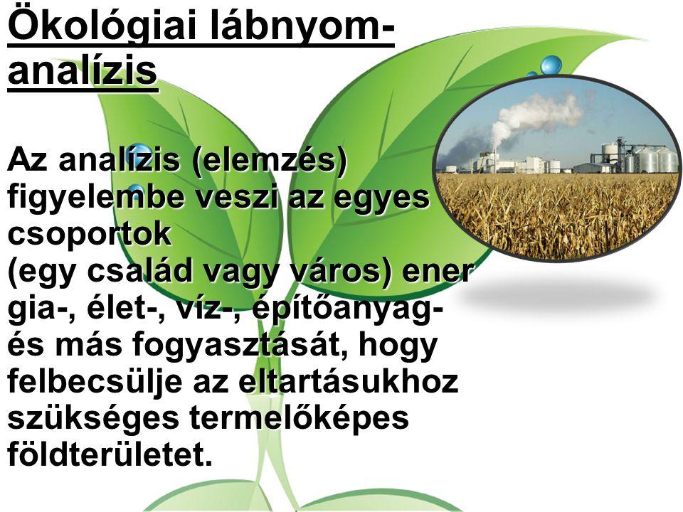 Ökológiai lábnyom-analízis