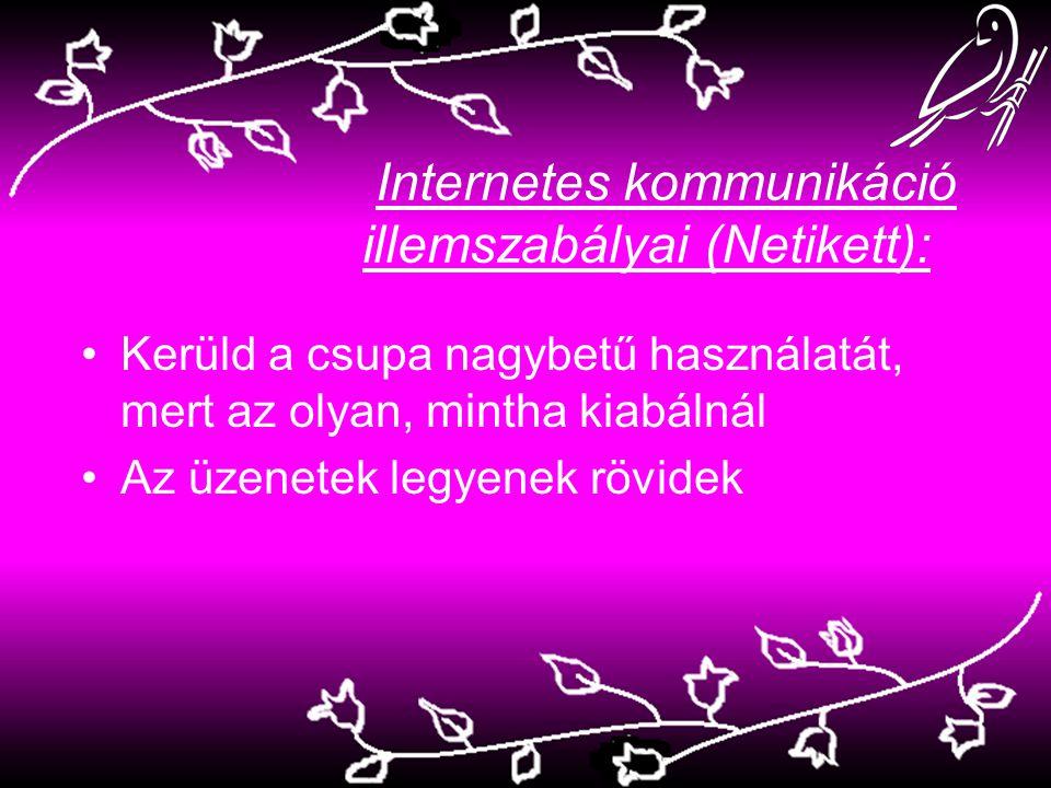 Internetes kommunikáció illemszabályai (Netikett):