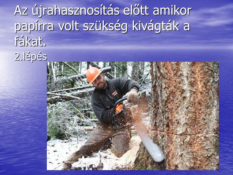 Az újrahasznosítás előtt amikor papírra volt szükség kivágták a fákat.