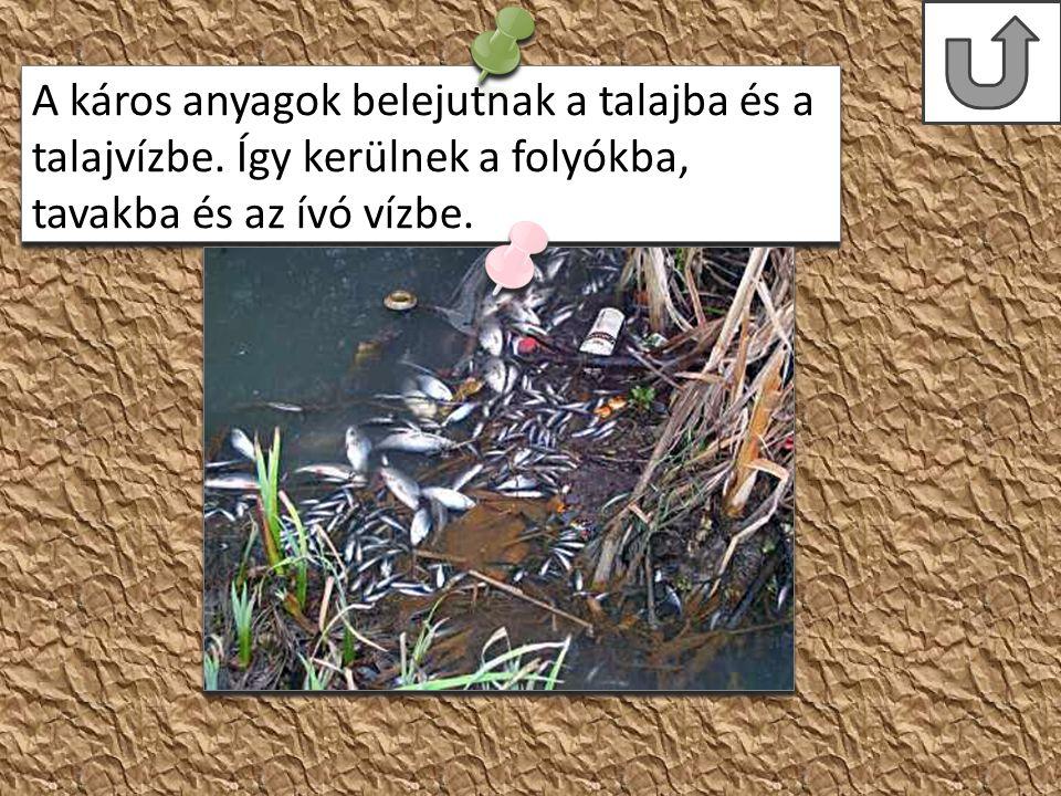 A káros anyagok belejutnak a talajba és a talajvízbe