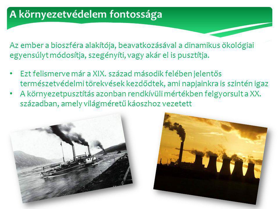 A környezetvédelem fontossága