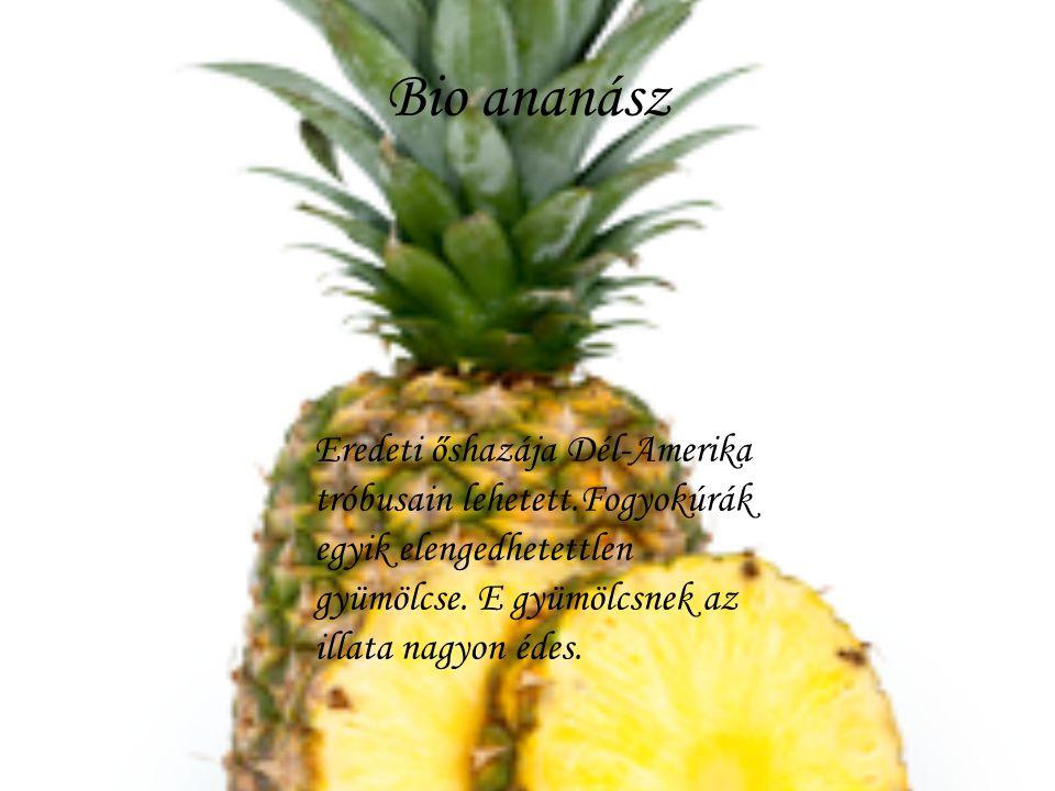 Bio ananász Eredeti őshazája Dél-Amerika tróbusain lehetett.Fogyokúrák egyik elengedhetettlen gyümölcse.