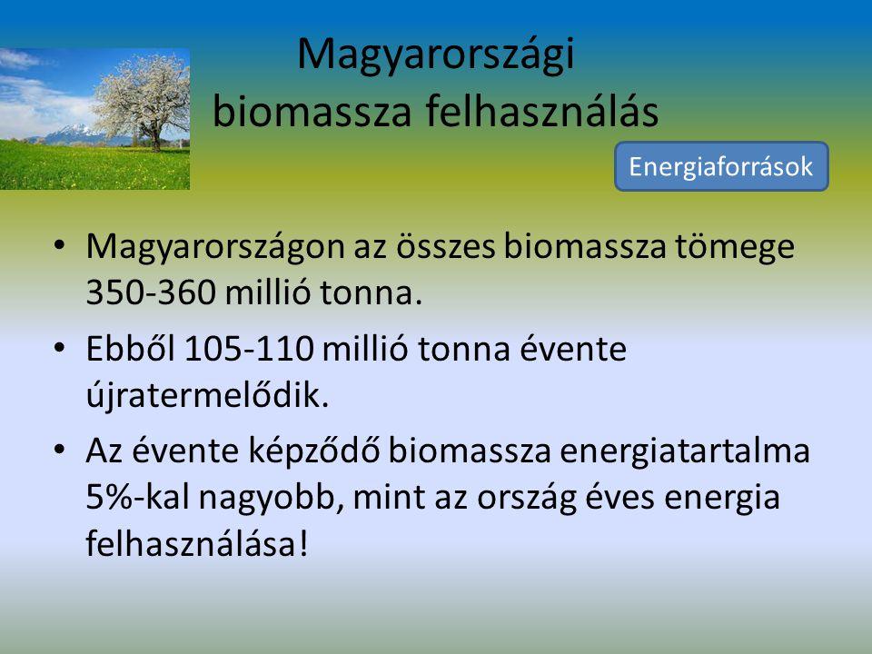 Magyarországi biomassza felhasználás