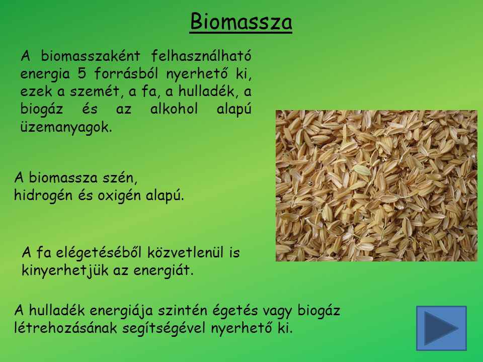 Biomassza A biomasszaként felhasználható energia 5 forrásból nyerhető ki, ezek a szemét, a fa, a hulladék, a biogáz és az alkohol alapú üzemanyagok.