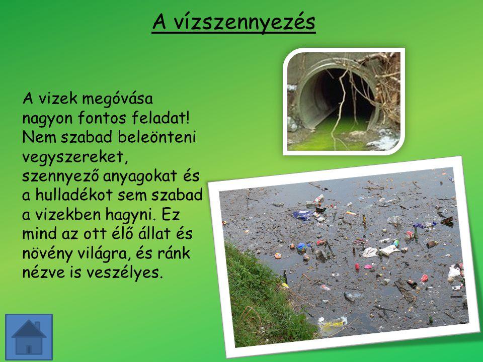 A vízszennyezés