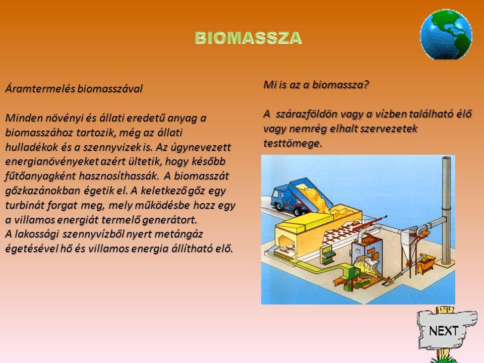 BIOMASSZA Mi is az a biomassza Áramtermelés biomasszával