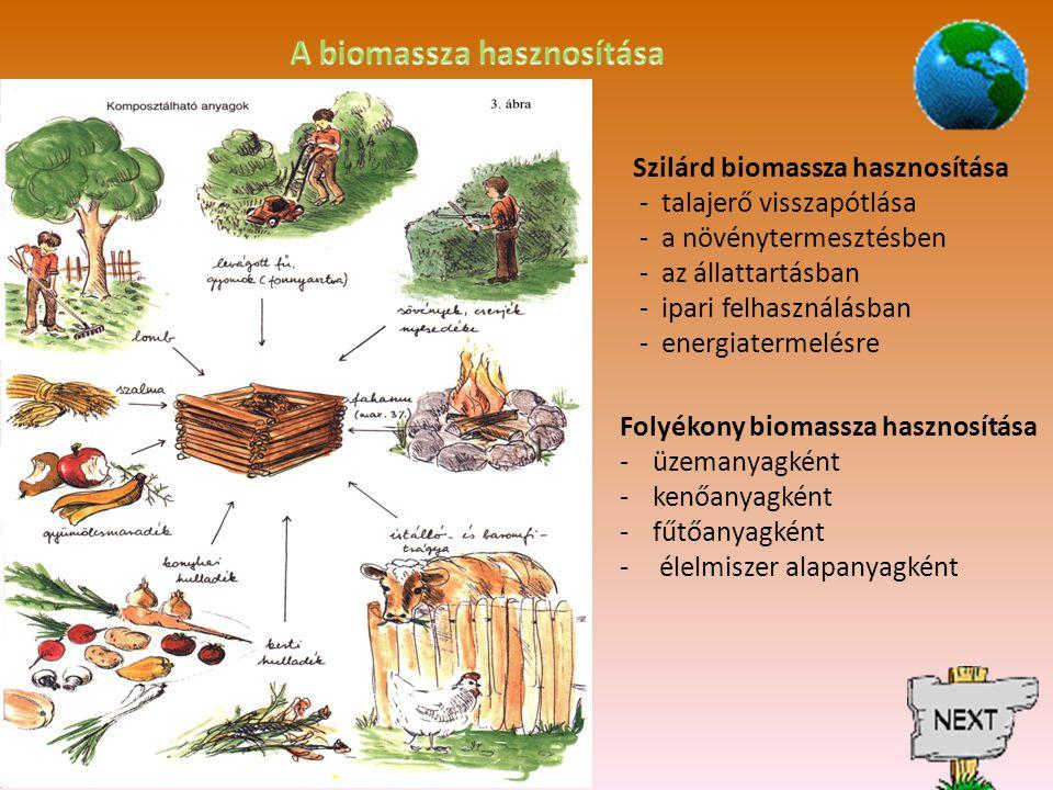 A biomassza hasznosítása