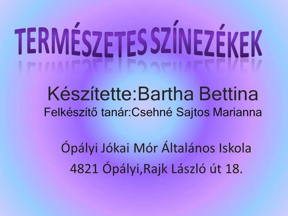 Ópályi Jókai Mór Általános Iskola 4821 Ópályi,Rajk László út 18.