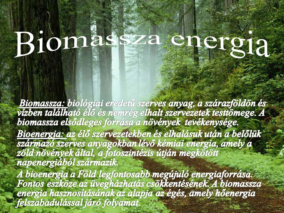 Biomassza energia