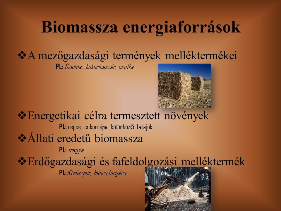 Biomassza energiaforrások