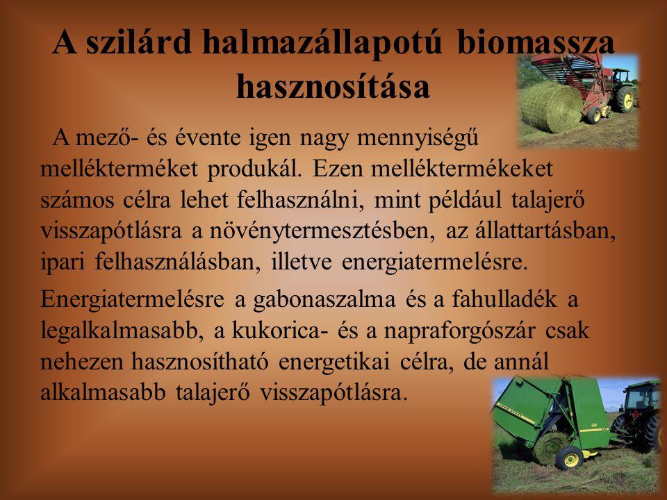 A szilárd halmazállapotú biomassza hasznosítása
