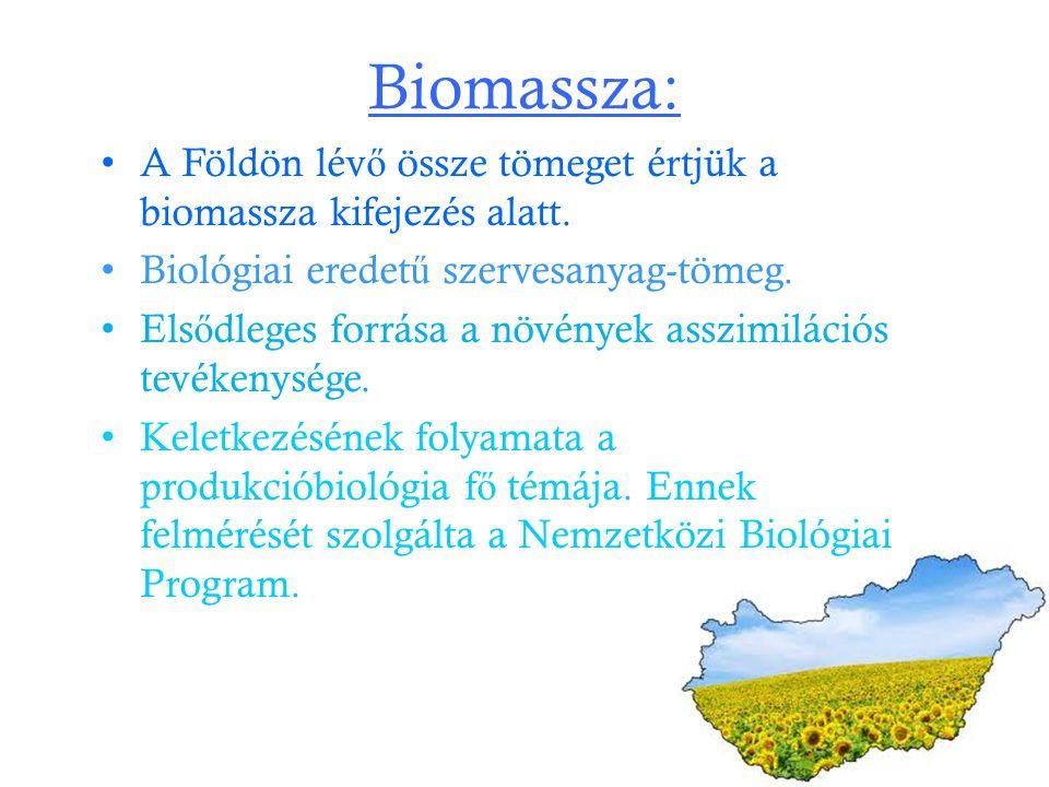 Biomassza: A Földön lévő össze tömeget értjük a biomassza kifejezés alatt. Biológiai eredetű szervesanyag-tömeg.