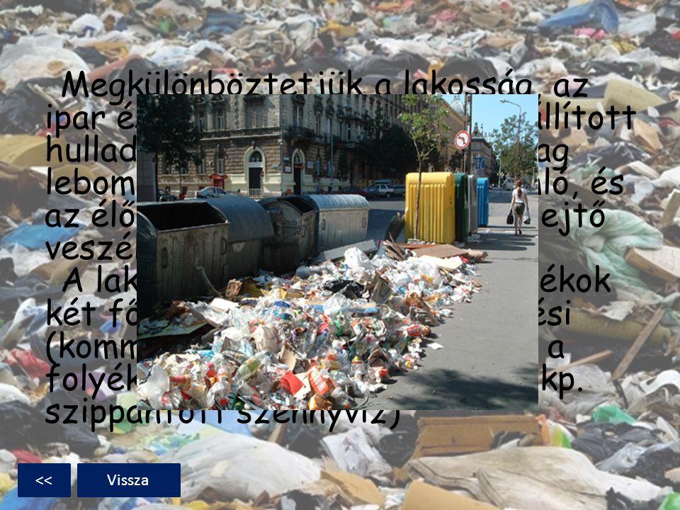 Megkülönböztetjük a lakosság, az ipar és más szektorok által előállított hulladékot; valamint a biológiailag lebomló, biológiailag le nem bomló, és az élővilágra káros hatást is kifejtő veszélyes hulladékokat. A lakosságnál keletkező hulladékok két fő fajtája a szilárd települési (kommunális) hulladék, valamint a folyékony települési hulladék (tkp. szippantott szennyvíz)