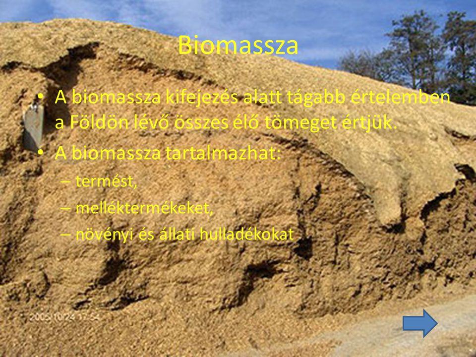 Biomassza A biomassza kifejezés alatt tágabb értelemben a Földön lévő összes élő tömeget értjük. A biomassza tartalmazhat: