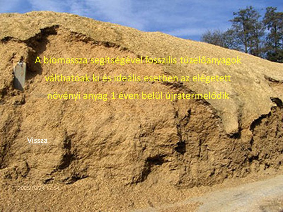 A biomassza segítségével fosszilis tüzelőanyagok válthatóak ki és ideális esetben az elégetett növényi anyag 1 éven belül újratermelődik