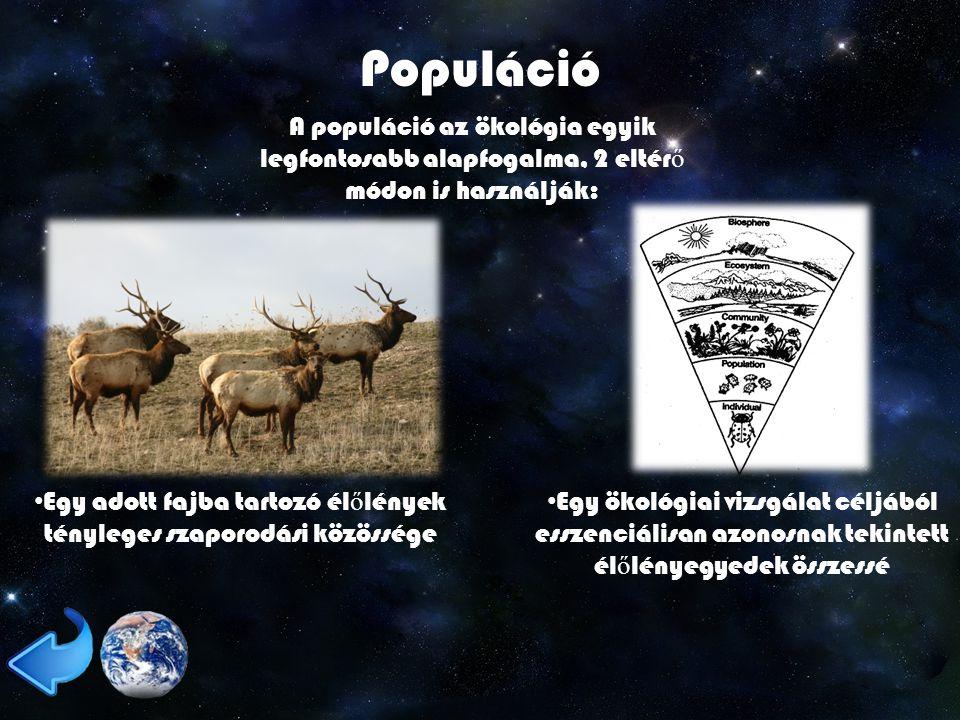 Egy adott fajba tartozó élőlények tényleges szaporodási közössége